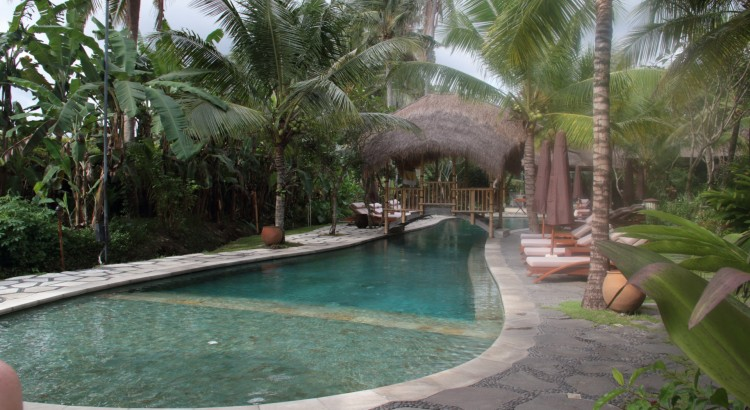 The pool at the Alaya Ubud.